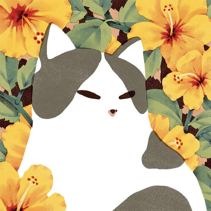 Jeannie Phan illustrazioni di gatti